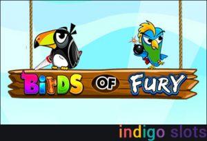 Online slot Birds of Fury.